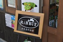 Ribbit_0004